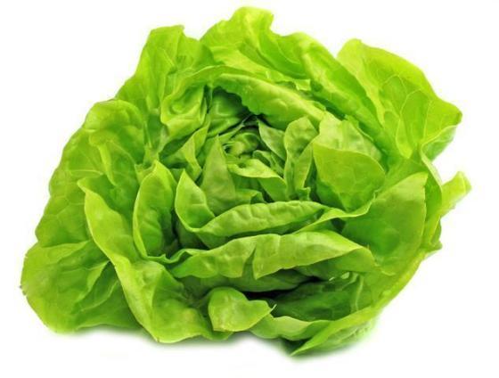 11763_rodzaje-salat---jaka-salate-wybrac_1_2