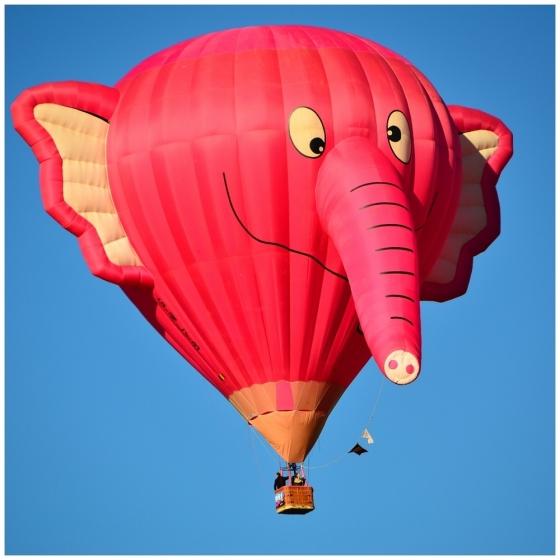 Albuquerque-Balloon-Fiesta-2011-a27014368