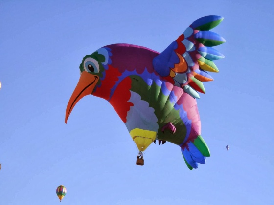 hummingbird Balloon