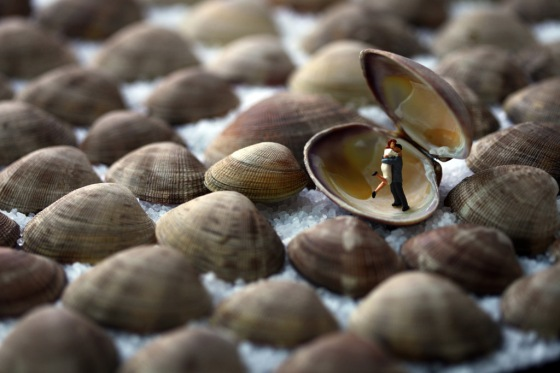 clamshell lovers 24x36 300dpi